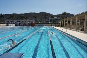 Richtig Schwimmen - Technikkurse für Erwachsene