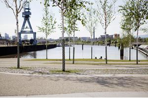 Hafen Offenbach - Von der No-Go-Area des alten Ölhafens zum hippen & grünen Stadtviertel