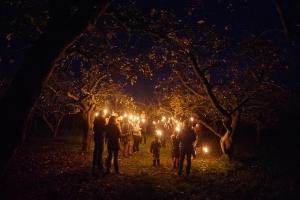Apfelbäume & Glühapfelträume - Winterlich-romantische Lagenwanderung mit Fackeln & Bio-Apfel-Raclette