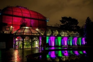 Winterlichter - Der Fotoworkshop im Frankfurter Palmengarten
