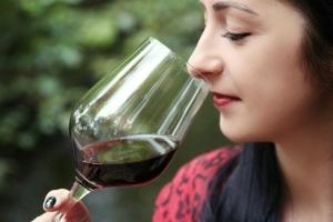 Die Frankfurter Weinschmecker Tour- Weinprobe-Rundgang durch einzigartige Vinotheken im Nordend