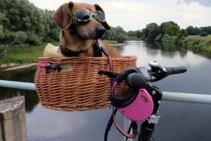 Frankfurt auf zwei Rädern - Die Fahrrad-Entdeckertouren