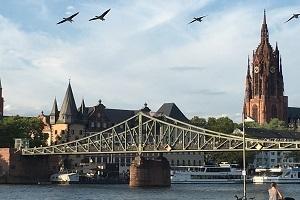 Über sieben Brücken - alte & neue Wege von hibbdebach nach dribbdebach...