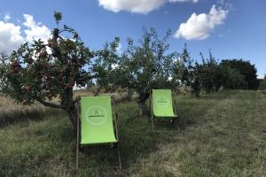 Die Apfelberatung - Ein anderer Weg der Stressbewältigung