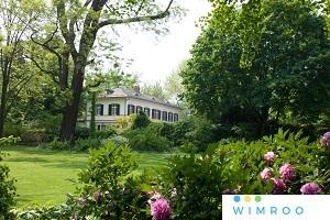 Interaktive LIVE-FÜHRUNG: Online zu Besuch bei Frankfurts Pflanzendoktor - Der Bethmannpark Inside