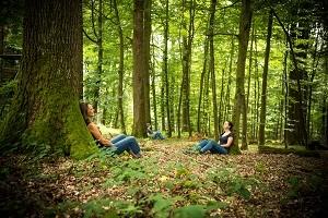Achtsamkeit in der Natur - Waldbaden im Naturpark Taunus