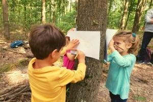 Kleine WaldentdeckerInnen - Bildung, Abenteuer & Eltern/Kind Bindung