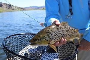 frische fische fischt fischers fritz