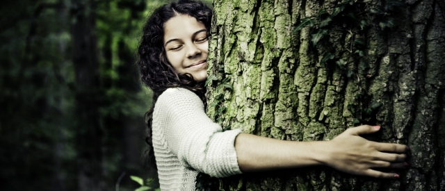 Meditation & Waldbaden